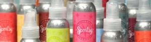 Scentsy Aluminum Bottle